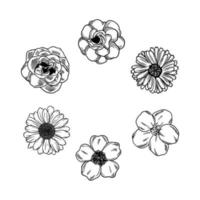 doodle skiss handritad blomma vektorelement. samling vackra olika blommor konst lövverk naturliga i vit bakgrund. dekorativ skönhet elegant illustration för design handritad blomma vektor