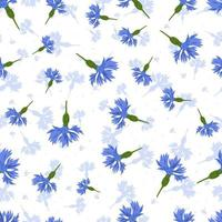 Vektor nahtloses Muster mit blauen Kornblumen auf weißem Hintergrund.