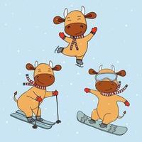 lustige Neujahrskühe im Wintersport. Winteraktivitäten. Tiere und Sport. Idee für Postkarte für Neujahrsferien mit dem Symbol des Jahres. vektor