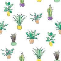 buntes nahtloses Muster der trendigen stilvollen Zimmerpflanzen. Pflanzen in Töpfen für den Innenbereich zu Hause oder im Büro. Karikatur flache Vektorillustration lokalisiert auf Weiß vektor