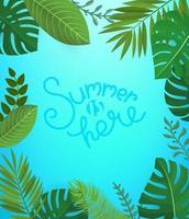 blommig bakgrund med bokstäver inskrift. sommaren är här vektor