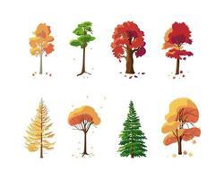 bunte Sammlung von Herbstbäumen auf weißem Hintergrund vektor