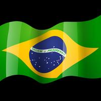 Vektor-Brasilien-Flagge vektor