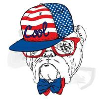 schöner Hund in einer Mütze und Brille. Hipster. vektor