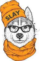 Hipster Hund in einer Kappe und Brille. vektor