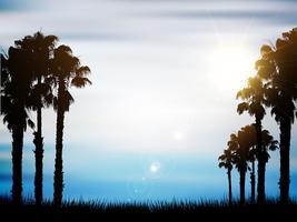Sommer Palme Hintergrund vektor