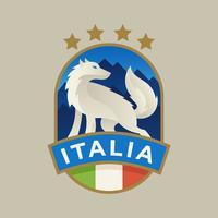 Italien WM-Fußball-Abzeichen vektor