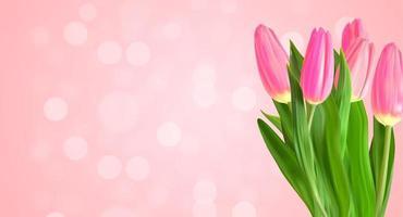 realistiska naturliga rosa tulpaner blommor bakgrund med nokeh ljus. vektor illustration