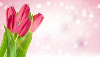 realistiska naturliga rosa tulpaner blomma bakgrund. vektor illustration