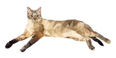 Vektorillustration im niedrigen Polygonstil. Katze auf einem weißen Hintergrund. vektor