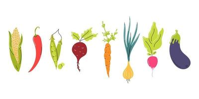 Satz frisches Gemüse in einer Reihe auf einem weißen Hintergrund angeordnet. natürliche Nahrung, Vegetarismus. Vektor flaches Bild, Symbol