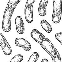 Bakterienmuster im realistischen Skizzenstil. handgezeichneter medizinischer Hintergrund. Vektorillustration