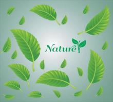fallende grüne Blätter mit lokalisiertem Hintergrund vektor