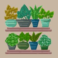 vektor krukväxter samling