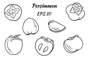 uppsättning ritningar av persimoner vektor
