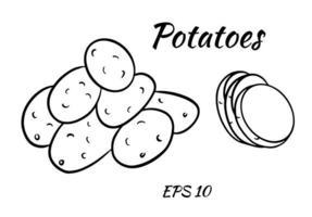 Vektorsatz mit Kartoffelumriss vektor