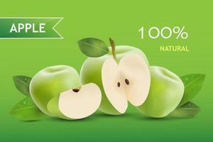 realistischer Apfel. Obst und frischer Apfelvektor. vektor