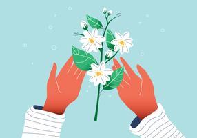 Vit vacker jasminblomma på händer Vector platt illustration
