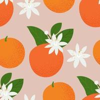sömlösa mönster med apelsiner, löv och blommor vektor