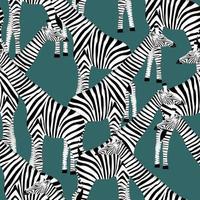dunkelblauer Hintergrund mit Giraffen, die Zebras sein wollen vektor