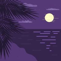 Nachtzeit-Strand-Vektor vektor