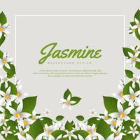 Jasmin-Blumen-Hintergrund vektor