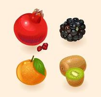 Frucht lokalisiert auf einem hellen Hintergrund. Granatapfel, Brombeere, Orange, Kiwi. Früchte gesetzt. Vektorillustration vektor