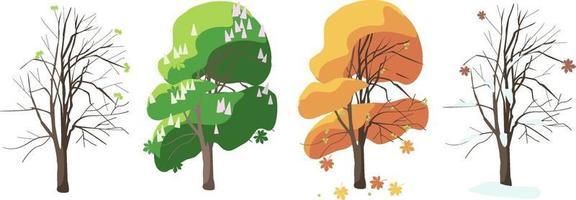 Kastanie in vier Jahreszeiten Frühling Sommer Winter Herbst vektor