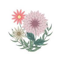 Satz Blumen und Dahlien zur Dekoration. Blumenarrangement vektor