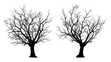 toter Baum der Schattenbild auf einem weißen Hintergrund vektor