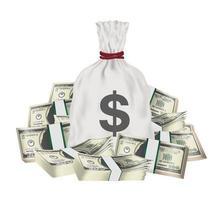 pengarpåse med hög med sedlar i packdollar vektor