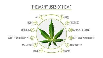 viele Verwendungen von Hanf, weißes Plakat mit Infografik der Verwendungen von Hanf und Greenbush der Hanfpflanze, Draufsicht vektor
