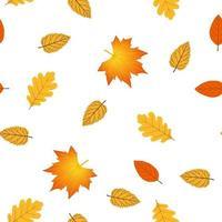nahtloses Muster mit Herbstlaub. Ahorn-, Eichen-, Birken-, Erlenblätter. Pflanzen der mittleren Zone. Vektor isoliert auf weißem Hintergrund. gelb-rote Töne.