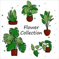 Vektorsammlung von Topfpflanzen im Topf in einem flachen Karikaturstil. eine Reihe von Elementen für die Dekoration Ihres Hauses, Zimmers oder Büros. isolierte Elemente auf einem weißen Hintergrund. vektor