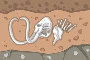 unterirdischer Boden mit Mammutfossilien vektor