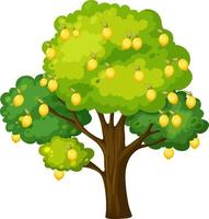 Zitronenbaum lokalisiert auf weißem Hintergrund vektor
