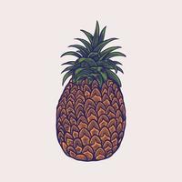 handgezeichnete Skizzenartillustrationen von reifen Ananas. exotische tropische Fruchtvektorzeichnungen lokalisiert auf weißem Hintergrund vektor