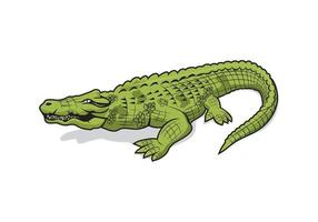 Alligator Krokodil Cartoon Charakter Design vektor