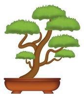 Bonsai-Baum auf einem weißen Hintergrundvektor vektor