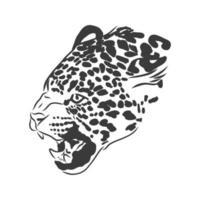 Jaguar. Hand gezeichnete Skizzenillustration lokalisiert auf weißem Hintergrund. Porträt eines Jaguartieres, Vektorskizzenillustration vektor