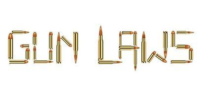 Bullet Munition Gun Gesetze auf weißem Hintergrund vektor
