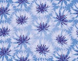 nahtloses Blumenmuster. Blume Kornblume blauen Hintergrund. vektor