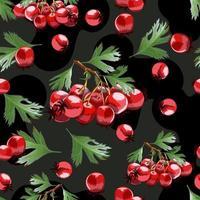 nahtloses Muster mit handgezeichneten Weißdornbrunchs. vektor