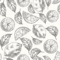 nahtloses Muster mit Zitronen im Skizzenstil vektor