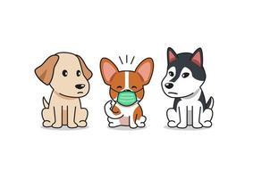 tecknad karaktär corgi hund bär skyddande ansiktsmask med andra hundar vektor