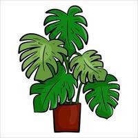 eine Topf-Zimmerpflanze im flachen Cartoon-Stil. ein Element für die Dekoration Ihres Hauses, Zimmers oder Büros. Vektorillustration lokalisiert auf einem weißen Hintergrund. vektor