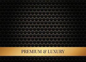 Luxus Sechseck Hintergrund vektor