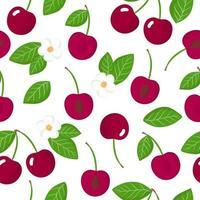 Nahtloses Muster der Vektorkarikatur mit exotischen Früchten, Blumen und Blättern des Prunus avium oder der Kirschen auf weißem Hintergrund vektor