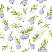 Nahtloses Muster der Vektorkarikatur mit austromyrtus dulcis oder exotischen Früchten, Blumen und Blättern midyim auf weißem Hintergrund vektor
