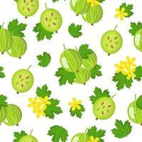 nahtloses Muster der Vektorkarikatur mit exotischen Rippen uva-crispa oder stachelbeeren exotischen Früchten, Blumen und Blättern auf weißem Hintergrund vektor